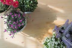 Drewno stół z bezpłatną przestrzenią dla teksta i pięknego sztucznego fl Obraz Stock