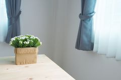 Drewno stół z pięknym białym kwiatem na garnku Zdjęcie Royalty Free