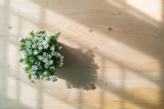 Drewno stół z sztucznym małym białym kwiatem na garnku, widok od Zdjęcia Stock