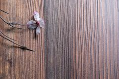 Drewno stół z sukura Obrazy Stock