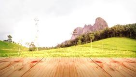 Drewno stołu kąt na zielonej ryżu ogródu plamie Obrazy Royalty Free