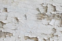 Drewno strugający kolor tekstury tło zdjęcie royalty free