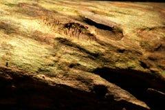 drewno tła Zdjęcie Royalty Free