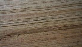 drewno tła zdjęcia royalty free