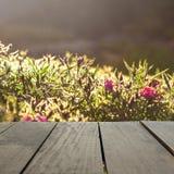 Drewno tarasowej i zielonej trawy pole w ranku czasu use jako natura Zdjęcie Stock