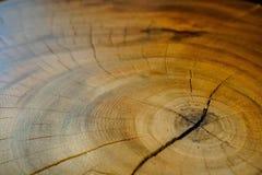 Drewno tekstura i wzór Obrazy Royalty Free