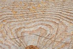 Drewno textured deseniowy makro- widok Starzejąca się drewniana powierzchnia, brown żółty kolor Obraz Royalty Free