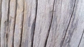 Drewno wyszczególnia tekstur tła i tapety Fotografia Stock