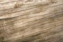 drewno wzoru Obraz Royalty Free