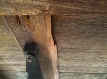 Drewno z dokrętkami rygle - i - zdjęcia royalty free