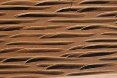 Drewno z rzeźbiącym wzorem Obraz Royalty Free