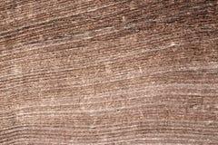 Drewno zaszaluje tekstury tła tapetę Obrazy Stock