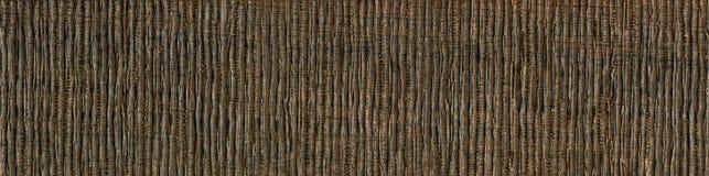 Drewno zbożowa tekstura Afrykański akacjowy drewno tekstura drewno, drewno adry cięcie Obrazy Royalty Free