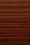 Drewno zbożowa tekstura. Fotografia Stock