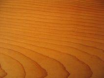 drewno zbożowy Zdjęcie Royalty Free