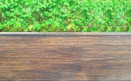Drewno zielonych rośliien ` s liście Dla oznakować Środowiska concpept Fotografia Royalty Free
