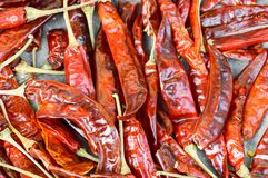 Dri chili pepper Royalty Free Stock Photos