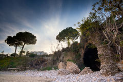 DRI The Ruins of Fontania Beach. An italian beach with an ancient roman ruin which became a cave covered by trees and roots Royalty Free Stock Images