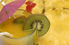 dricka orangen Royaltyfria Bilder