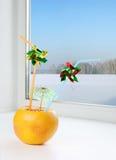 dricka saftigt rør för ny grapefrukt Fotografering för Bildbyråer