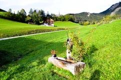 Dricka springbrunnar i Santa Maddalena, höst, i SunsetSouth Tyrol (Italien) Arkivfoto