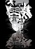 dricka tiger stock illustrationer
