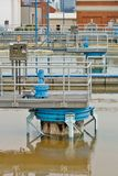 dricka växtbehandlingvatten royaltyfri bild