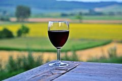 dricka wine Arkivfoto