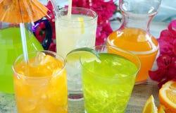 dricker sommar Arkivbilder