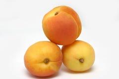 Drie abrikozen Royalty-vrije Stock Foto