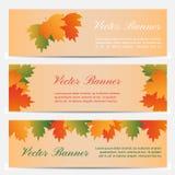 Drie abstracte de herfstbanners met kleurenbladeren Stock Foto's