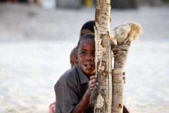 Drie Afrikaanse kinderen Stock Afbeelding