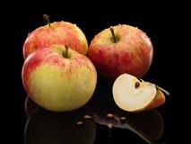 Drie appelen en zaden Stock Fotografie