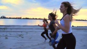 Drie atletische vrouwen in bovenkledij stoten langs de zandpijler aan van de ladingshaven, in de schemering van de ochtend stock videobeelden