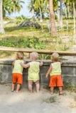 Drie babypeuter die door omheining op de kippen en de hanen in het kippenhok kijken De gele overhemden Royalty-vrije Stock Afbeeldingen