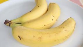Drie bananen op een witte roterende plaat stock footage