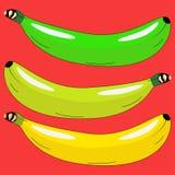 Drie bananen in verschillende kleuren Stock Foto