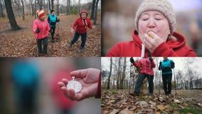 4 in 1: Drie bejaarden doen het Skandinavische lopen in het park stock videobeelden