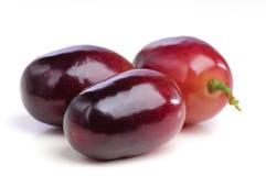 Drie bessen van rode druiven sluiten omhoog. Stock Afbeeldingen