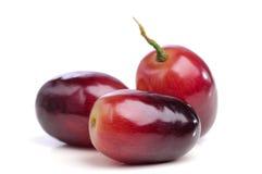 Drie bessen van rode druiven sluiten omhoog. Royalty-vrije Stock Afbeeldingen