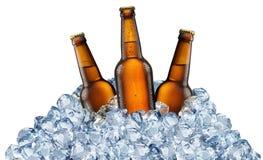 Drie bierflessen die koel in ijsblokjes worden stock foto's