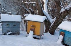 Drie bijenkorven in de winter royalty-vrije stock fotografie
