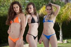 Drie bikinivrouwen door de pool Royalty-vrije Stock Afbeeldingen