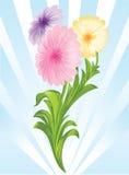 Drie bloemen vector illustratie