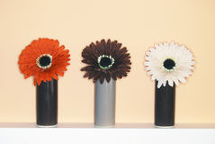 Drie bloemhoofden Stock Fotografie