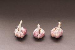 Drie Bollen van Knoflook Royalty-vrije Stock Fotografie