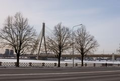 Drie Bomen en de Vansu-Brug in Riga Stock Afbeeldingen