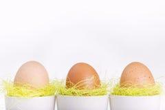 Drie bruine eieren in witte koppen Stock Afbeelding