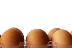 Drie bruine kippeneieren in plastic containerpakket Stock Afbeelding
