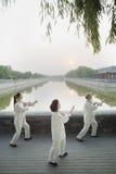Drie Chinese Mensen die Tai Ji uitoefenen royalty-vrije stock afbeeldingen